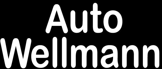 Partner AutoWellmann